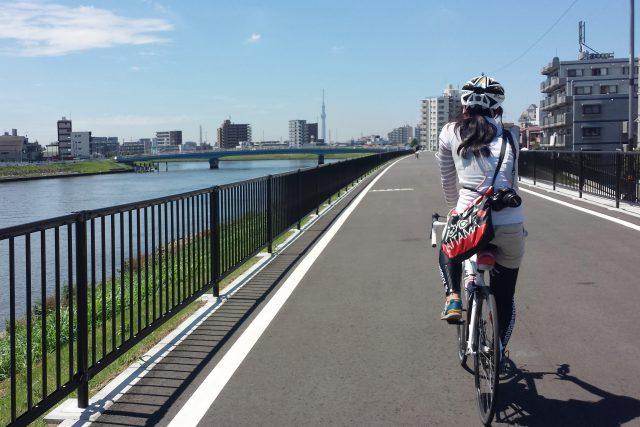 コースは基本サイクリングロード
